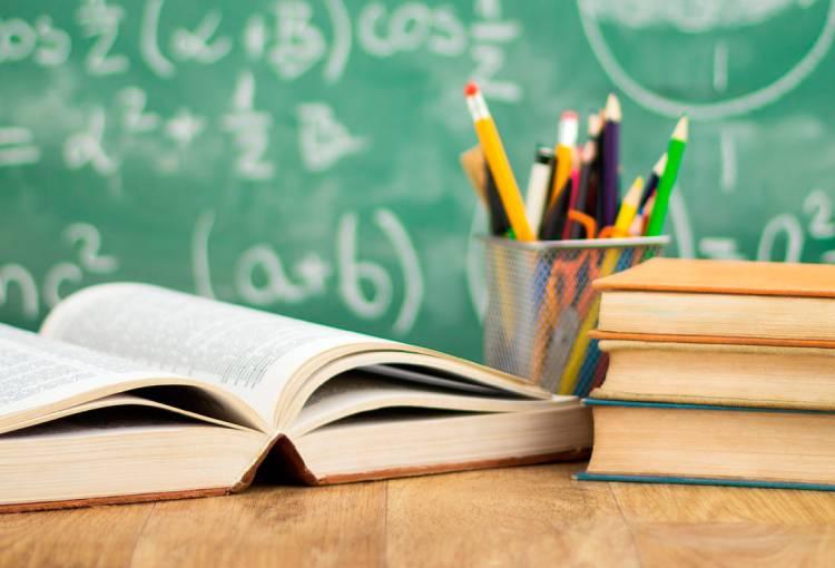 Educació al Pla: una visió global